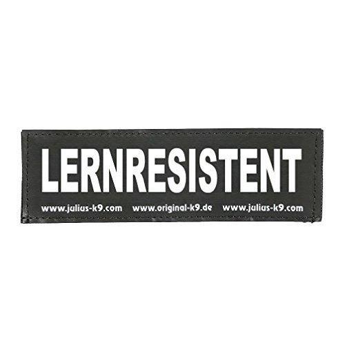 Julius-K9 162LR-G-33127 Klettaufschrift, LERNRESISTENT, schwarz