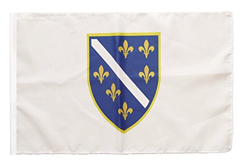 Flaggenfritze Flagge/Fahne Bosnien alt 1992-1998 + gratis Sticker