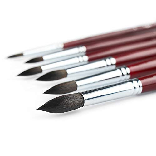 Transon Artist Round Watercolor Paint Brush Set of 6 Squirrel Hair