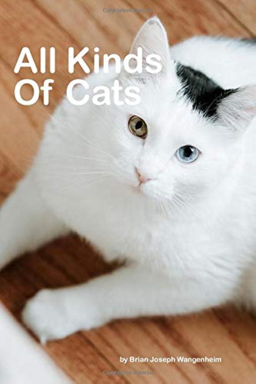 蛾回転狼All Kinds Of Cats: beautiful pictures of cats