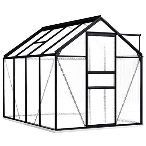 vidaXL Gewächshaus mit Fundamentrahmen Garten Treibhaus Pflanzenhaus Frühbeet Gartenhaus Tomatenhaus Anthrazit Aluminium Polycarbonat 4,75 m³