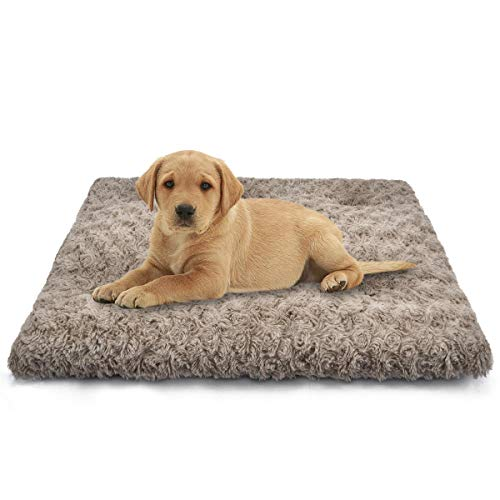 SIWA MARY Dog Bed Crate Pad Ultra Soft Anti Slip Washable Cozy 24/30/36/42 Kennel Pad for Dogs and Cats (24'', Brown) Bed Mats