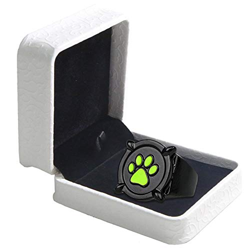 Cat Noir Anello Ring Anime Cosplay Costume Lega di zinco Accessori DIA 22 mm Adulto Fancy Dress Pandent Halloween Natale Gifts Box Set