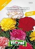 Sementi da fiore di qualità in bustina per uso amatoriale (GAROFANO CHABAUD DOPPIO IN MIS...