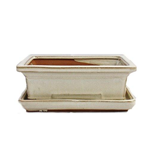 Exotenherz - Bonsai-Schale mit Unterteller Gr. 3 - hellbeige - eckig - Modell G29 - L 18cm - B 13cm - H 6cm