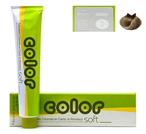 Salerm Cosmetics Accessoires pour Colorations 200 ml