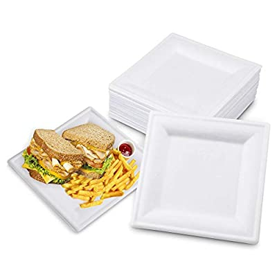 """Square 6"""" x 6"""" Biodegradable Bagasse Plates in - White Eco Friendly Microwave Safe Sugarcane Compostable 100% Natural and Plastic Free Plate (100/Pack)"""