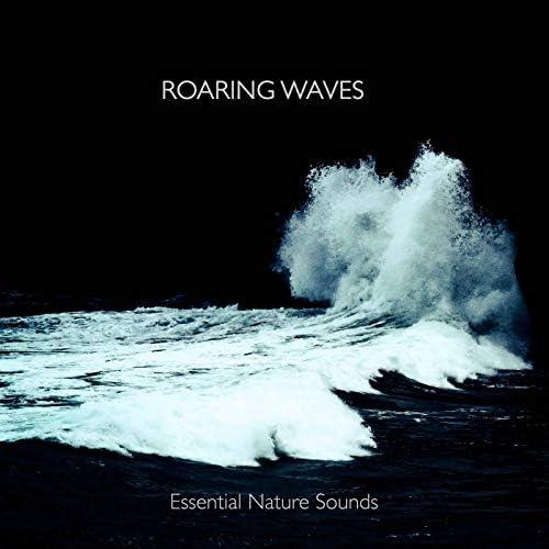 Essential Nature Sounds