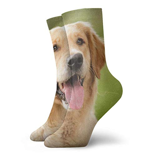 Warm-Breeze Golden Retriever Compression Socks Unisex Socks Fun Fun Crew Socks Thin Socks Short Ankle For Outdoor Athletic Moisture Wicking