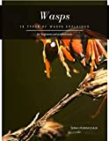 Wasps: 19 Types of Wasps Explained (English Edition)