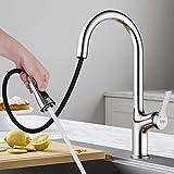 Synlyn Küchenarmatur mit Ausziehbarer Brause, Wasserhahn Armatur, Hochdruck Spültischarmatur für...