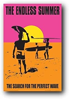 endless summer 2 movie poster