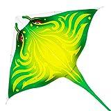 Mint's Colorful Life Devil Fish - Cometa para niños y adultos, línea única, mango de dragón