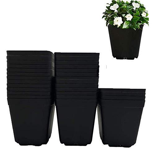 Tiamu 30 pezzi Vaso Quadro, Piante in plastica pentole, Vasi per piantine, vasi per piante succulente(10 cm*10cm*8.5cm)