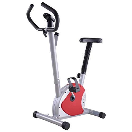 Hifeel Bicicleta estática Interior Ajustable Home Fitness P