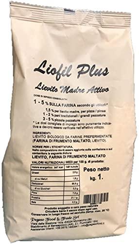 LIOFIL PLUS, lievito madre attivo per panificazione e pasticceria. prodotto 100% artigianale _ 1