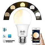 Bluetooth Mesh LED電球, 日の出と日没 100個電球を可同時に制御ワット数 E26口金 玄関灯 色温度電球色 暖かい白 色&冷かい白 色調節可能な調光相当の40W白熱電球相当は、とスマートフォンで動作します
