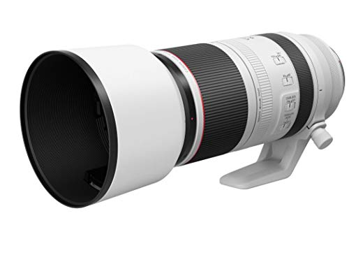 Canon望遠レンズRF100-500mmF4.5-7.1LISUSMフルサイズ対応RF100-500LIS