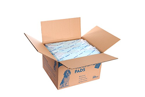 All-Absorb A07 Bulk Packaging Training Pads, blue,