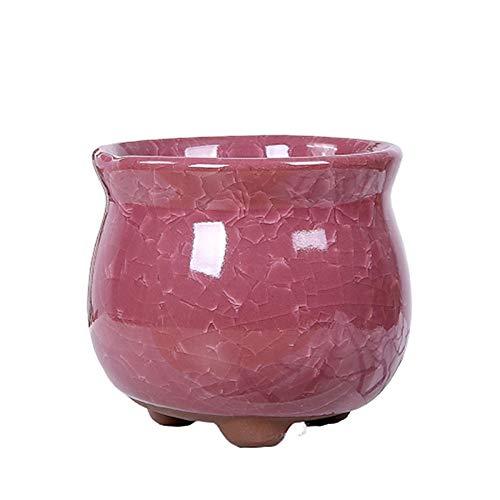 LSTC Macetas Ceramica Macetas Pequeñas Planta de Marihuana Semillas de ollas Flor Olla Interior Pote de Flor de Interior Macetas para Plantas La Planta Pink