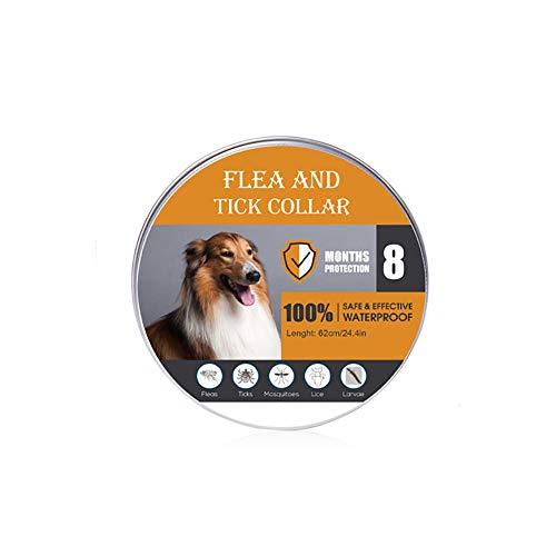SAKURAM 2 Piezas Collar Antiparasitos para Perro,Gato Pequeño Mediano Grandes contra Pulgas, Garrapatas y Mosquitos, 8 Meses,Natural Insect Repellent Essential Oil Pet Collar - 62CM (para Perros)