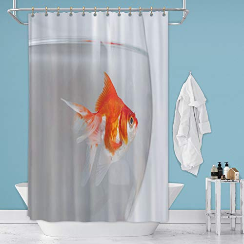 Hitecera Gold Fish in Aquarium France,Shower Curtain Bowl for Bathroom 71 in by 96 in (WxH)