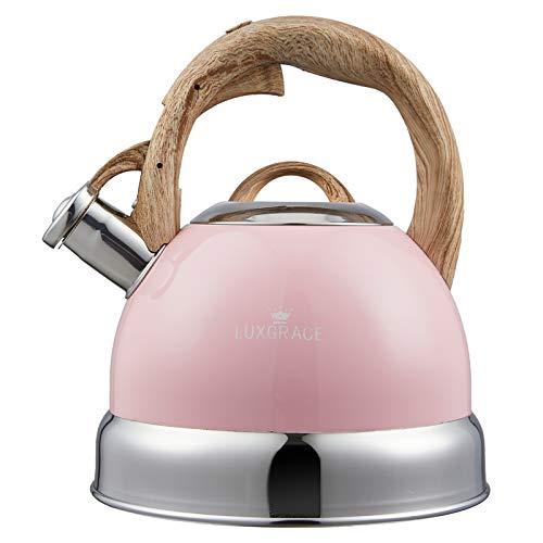Tea Kettle -2.5 Quart Stovetop Whistling Teapot Stainless Steel Tea Pots for Stove Top Whistle Tea Pot