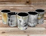 Carfar - Bicchiere da whisky in vero corno di vetro, stile vintage, 5 bicchieri
