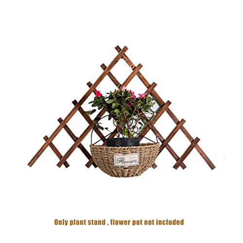 LANGYA Wood Picket Garden Fence, Triangle Anti-Corrosion Expandable Plant Climbing Lattices, Flower Beds Decorative Garden Fence Support,Expanded Size: 65x65x65cm