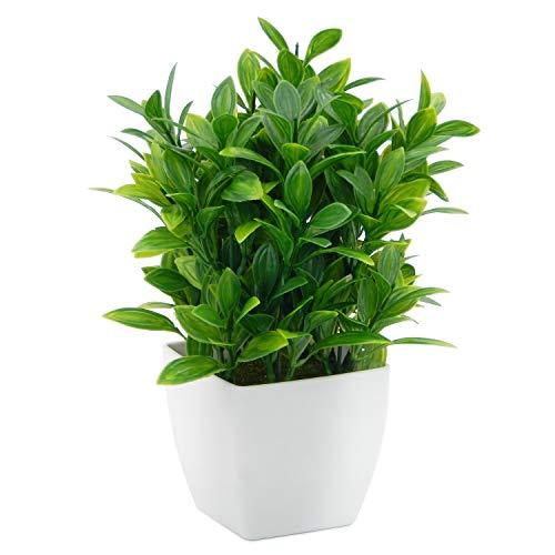 OFFIDIX Piante Artificiali Mini Eucalyptus in plastica con Vaso Quadrato per scrivania, Piante finte per la casa in Finta pianta con vasi in plastica per la Decorazione Domestica