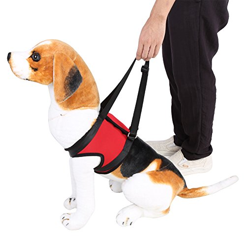 Dog Lift Harness Support Harness Support & Recovery Sling, Pet Rehabilitation Lifts Vest Adjustable Breathable Straps for Old, Disabled, Joint Injuries, Arthritis, Paralysis Dogs Walk, Front Leg L