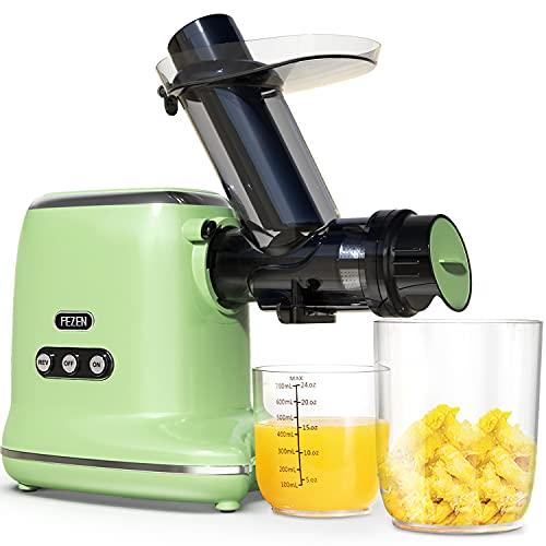FEZEN Slow Juicer, Leistungsstarker Entsafter für Obst und Gemüse Ruhiger Motor & Umkehrfunktion & Saftkanne & Reinigungsbürste, Leicht zu Reinigen, Rezepte (Grün)