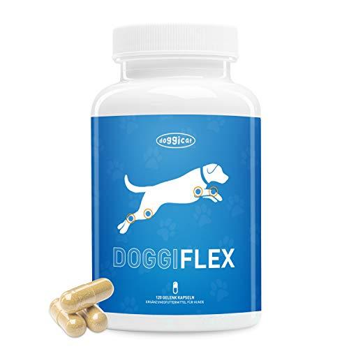 Doggi Flex Joint Tablets för hundar — Innovativt ledskydd med grönläppade musslor, Devils Claw, MSM — speciellt utvecklad för hundar av alla raser och åldrar — 120 kapslar