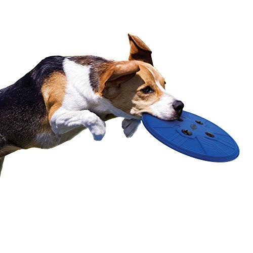 Nerf Perro Howler, 25,4 cm: Amazon.es: Productos para mascotas