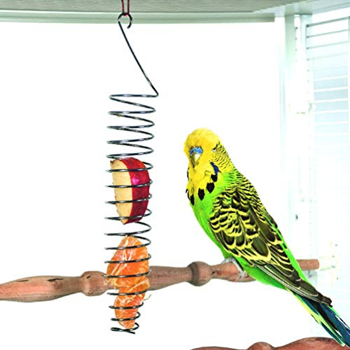 Hangqiao Pincho para Frutas y Verduras de Acero Inoxidable para pájaros, Herramienta para Alimentar a Loros, periquitos, cacatúas, Cesta de Aperitivos