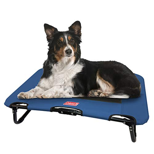 Coleman Folding Cot for Pet Up to 50 Lbs, 30 x 20 x 7 inches