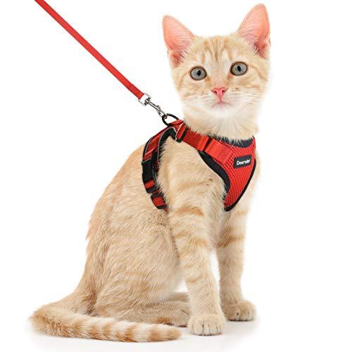 Pettorina per Gatti in Tessuto Morbido, Fibbie Regolabile, Imbracatura per Gatti Facile da Indossare, Pettorina per Cuccioli in Maglia Traspirante (S,Arancia)