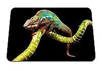 26cmx21cm マウスパッド (爬虫類カメレオン色の小枝) パターンカスタムの マウスパッド