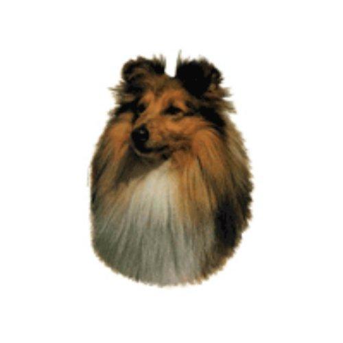 World Stickers Sweden AB Autocollant Shetland Sheepdog taille medium