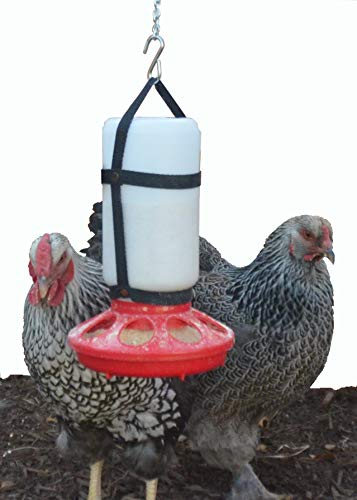 Your Happy Chicks 1 Qt. Hanging Harness with Plastic Bottle and Feeder Base