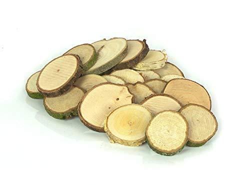 Krippenbau-Lewen 100 Baumscheiben Holzscheiben Astscheiben Bastelholz 3-5 cm