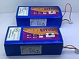 ALVILITIO Bateria de Litio Recargable 36V 9AH/12AH/15AH/18AH/21/AH/24AH/27AH/30AH Alta Potencia (36V 15AH)