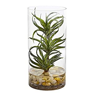 MISC Air Plant Artificial Succulent in Glass Vase