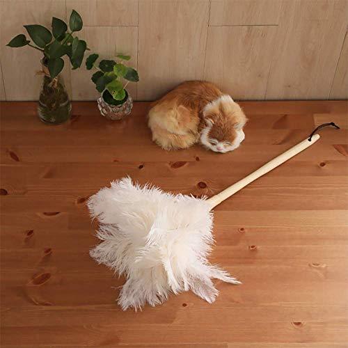 ZXWNB Plumero De Avestruz para Limpiar El Polvo Limpieza Doméstica Las Herramientas Sanitarias No Pueden Limpiar La Pluma De Pollo De Jade Blanca
