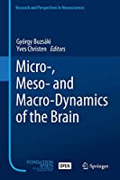 Micro-, Meso- and Macro-Dynamics of the Brain (Research and Perspectives in Neurosciences)