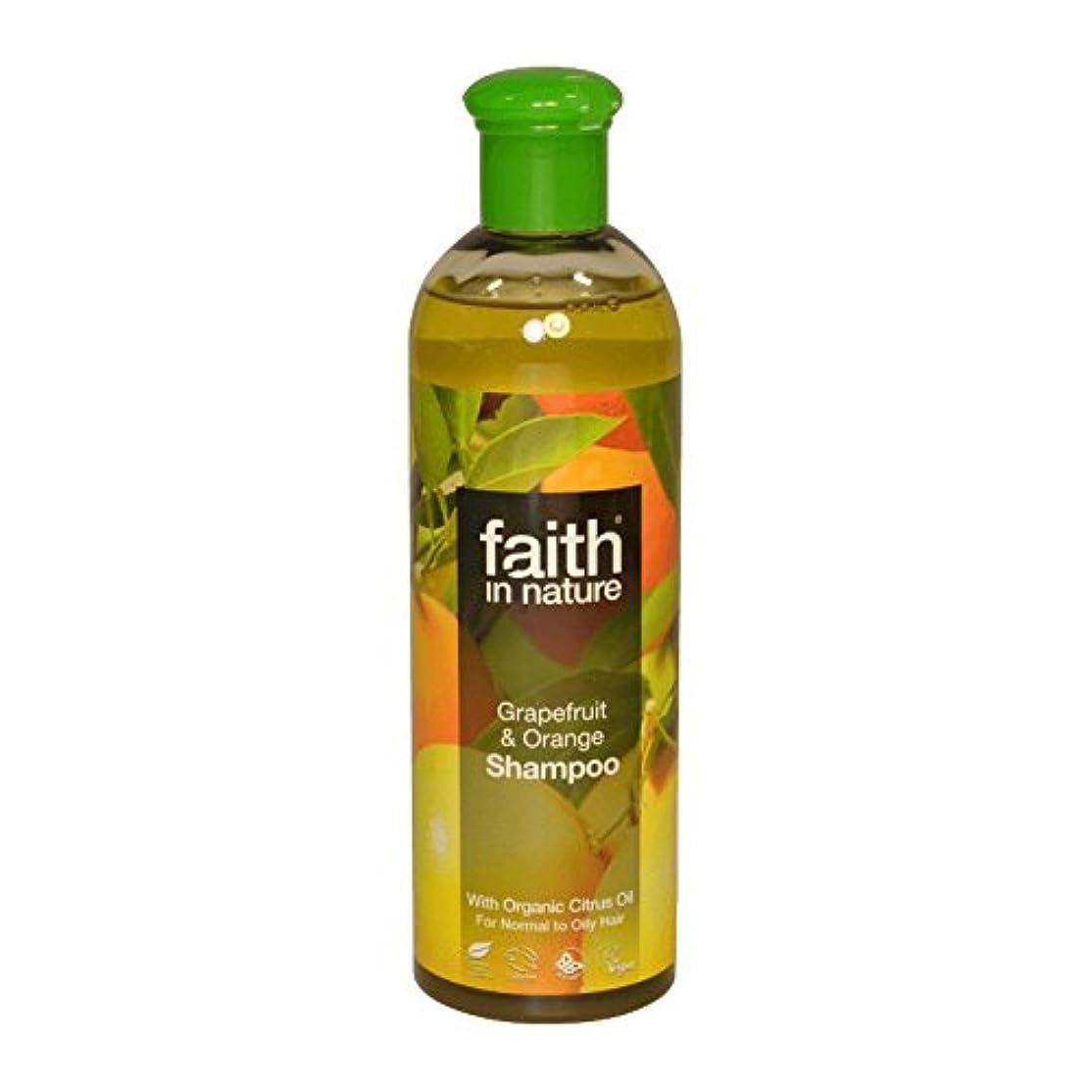 Faith in Nature Grapefruit & Orange Shampoo 400ml (Pack of 6) - 自然グレープフルーツ&オレンジシャンプー400ミリリットルの信仰 (x6) [並行輸入品]