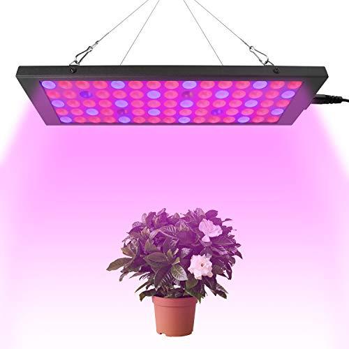 FORNORM 100W LED Pflanzenlampe Vollspektrum, 9900LM 75 LED Rot Blau Licht Wachstumslampe Pflanzenleuchte Pflanzenlampe Panel, 725-735NM IP44 Wachstumslampe für Pflanzen