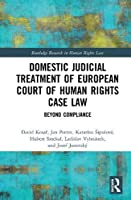Domestic Judicial Treatment of European Court of Human Rights Case Law: Beyond Compliance (Routledge Research in Human Rights Law)