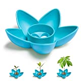 HENMI Avocado Tree Growing Kit, Avocado Planting Bowl Plant Indoor Garden Gift Practical Gardening Gifts Kitchen Gifts for Women, Blue