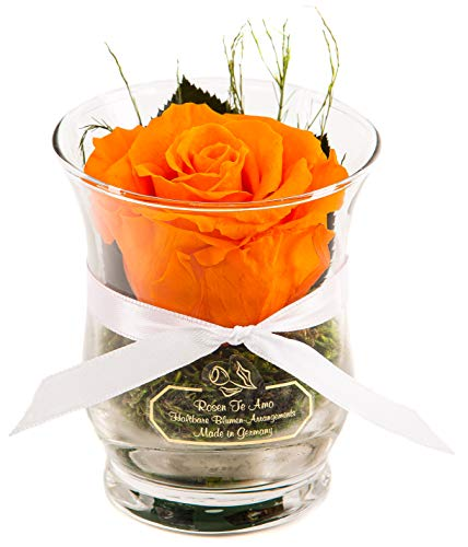 Rosen-Te-Amo – 1 Premium orange Rose in der Vase mit echten Bindegrün - Haltbare Rose im Glass als unvergängliches Geschenk - 3 Jahre haltbar ohne Wasser